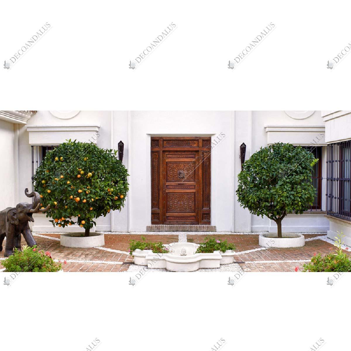 Puerta Madera Maciza 01